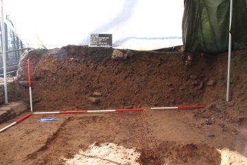 Heute weitgehend vergangen, konnten sich durch den permanenten Kalkeintrag von oben die Knochen erhalten.